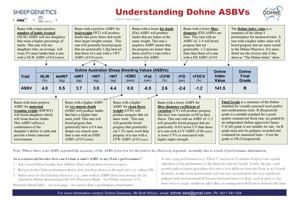 Understanding Dohne ASBVs